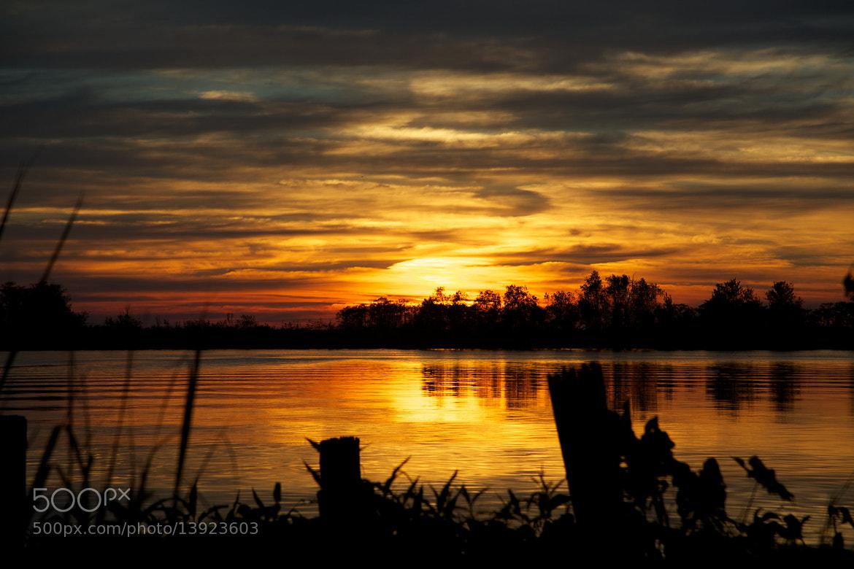 Photograph Solar Array by Steven Blackmon on 500px