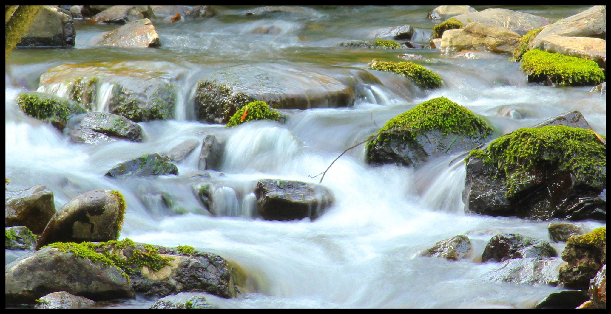 Photograph Flowing by by Anne Costello on 500px