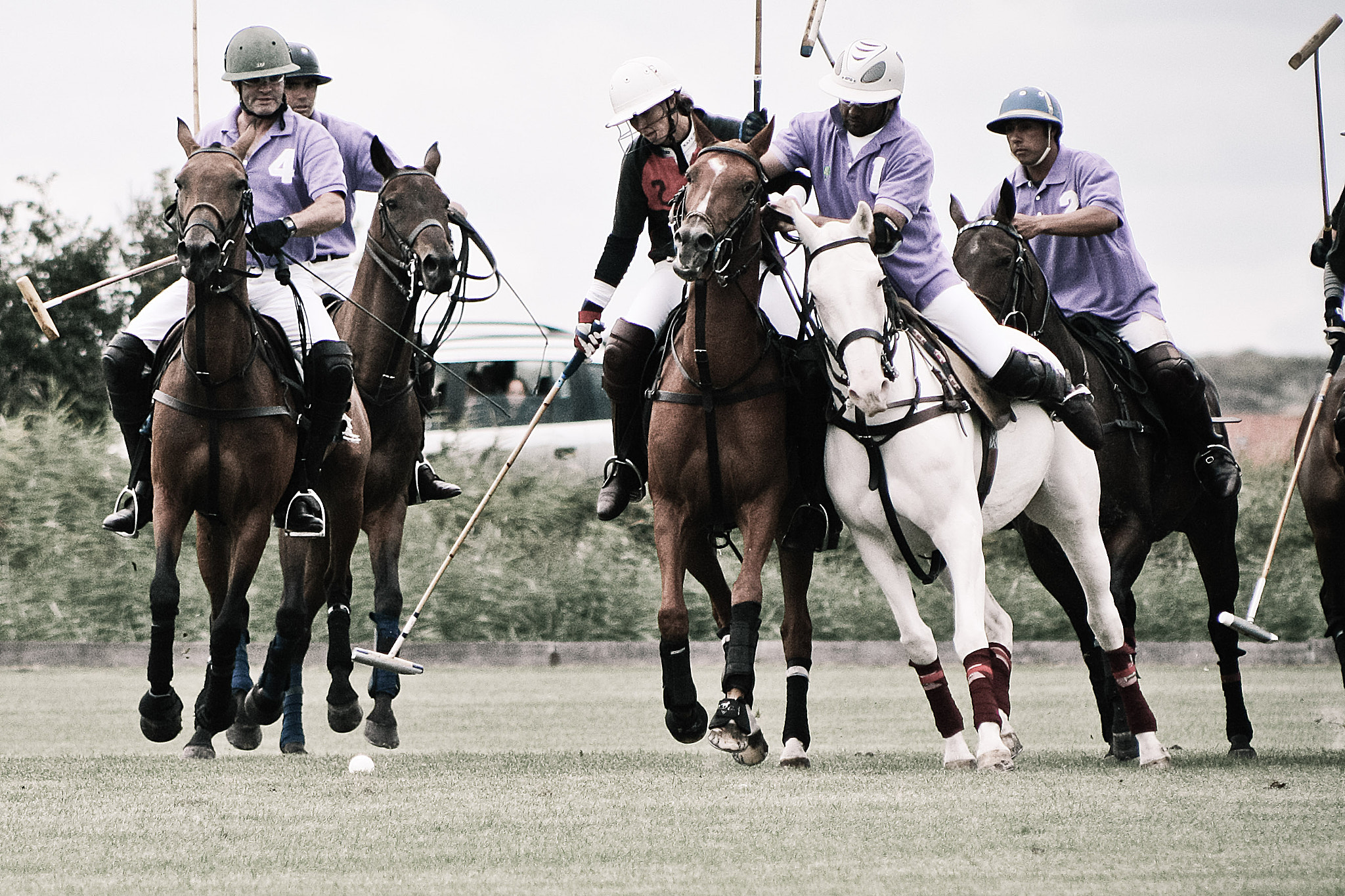 Photograph Poloaction by M. Lappe on 500px
