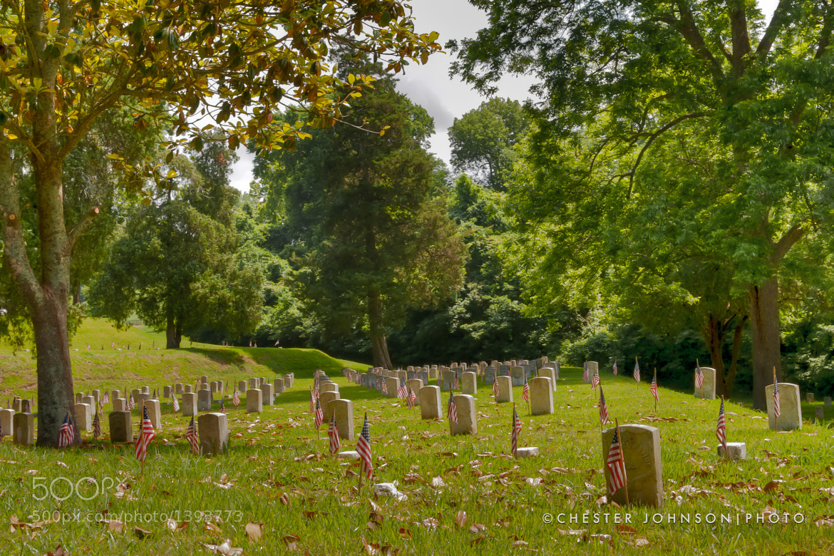 Photograph Vicksburg National Park Cemetery  by Chester Johnson on 500px