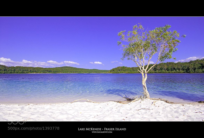 Photograph Lake McKenzie - Fraser Island - Australia by Pascal Bovet on 500px