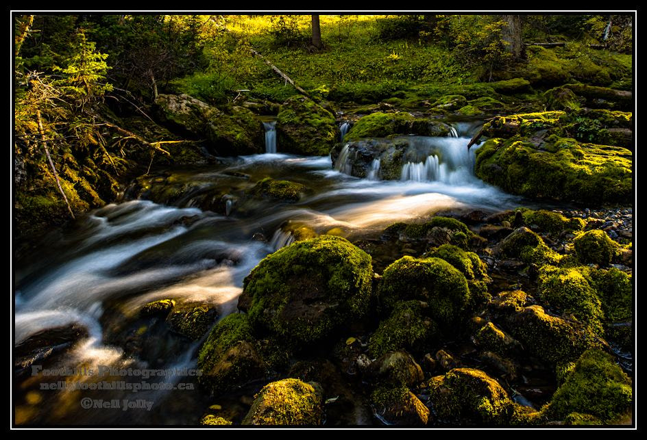 Photograph Smut's Creek by Neil Jolly on 500px