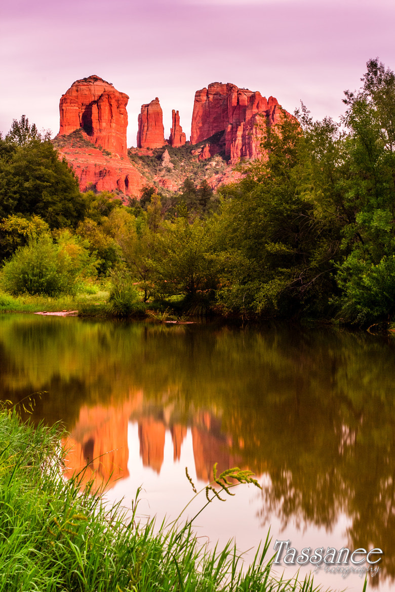 Photograph Sedona by Tassanee Angiolillo on 500px