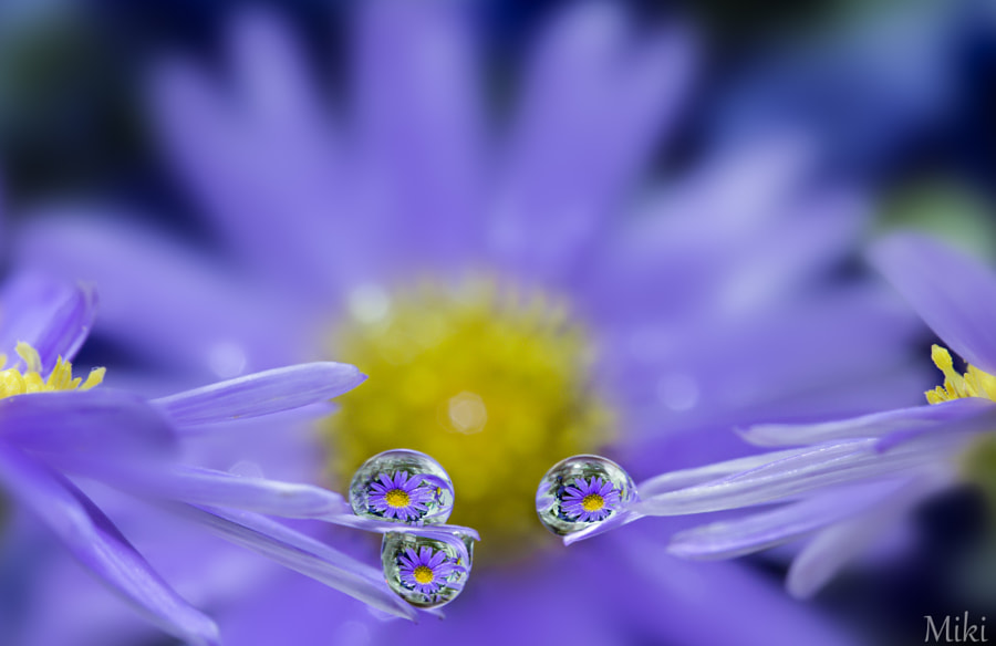Three graces by Miki Asai
