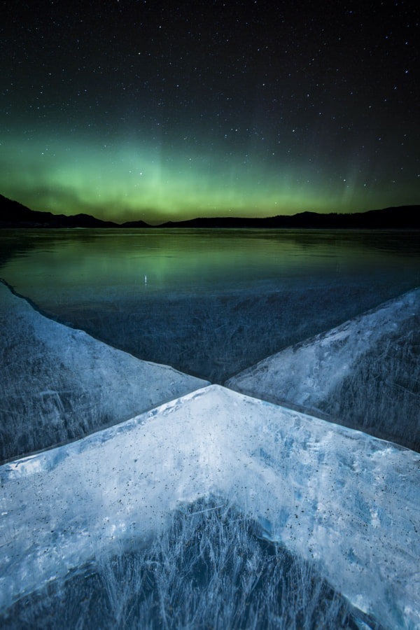 X-Rays by Paul Zizka on 500px.com