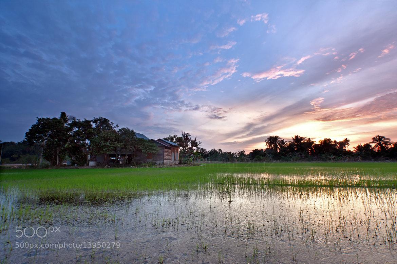 Photograph Dusk at kampung by jihhaur lio on 500px