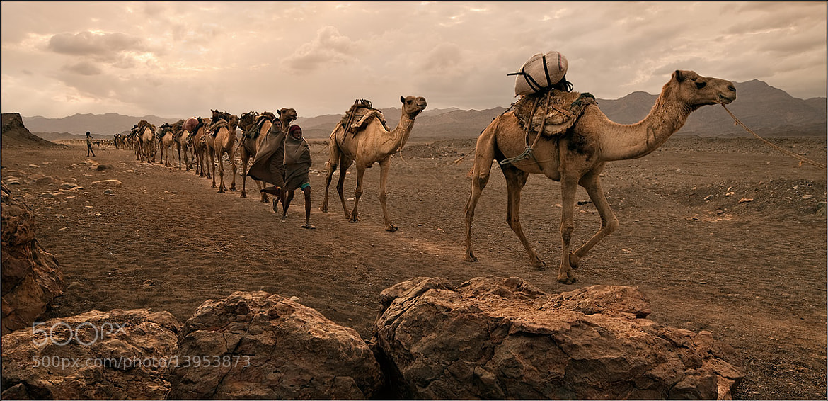 Photograph Ethiopia by Yury Pustovoy on 500px