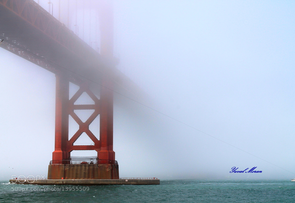 Photograph The Golden Gate fog by Yuval Moran on 500px