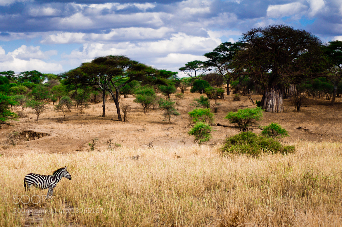 Photograph African Landscape by Fawzi Mohab on 500px