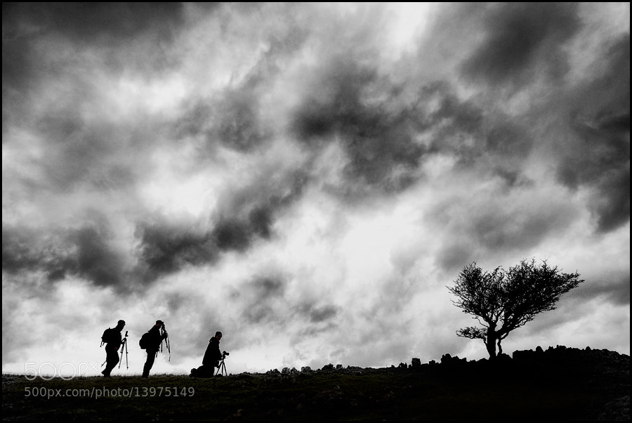 Photograph The Tree Wise Men by Gary Howells on 500px