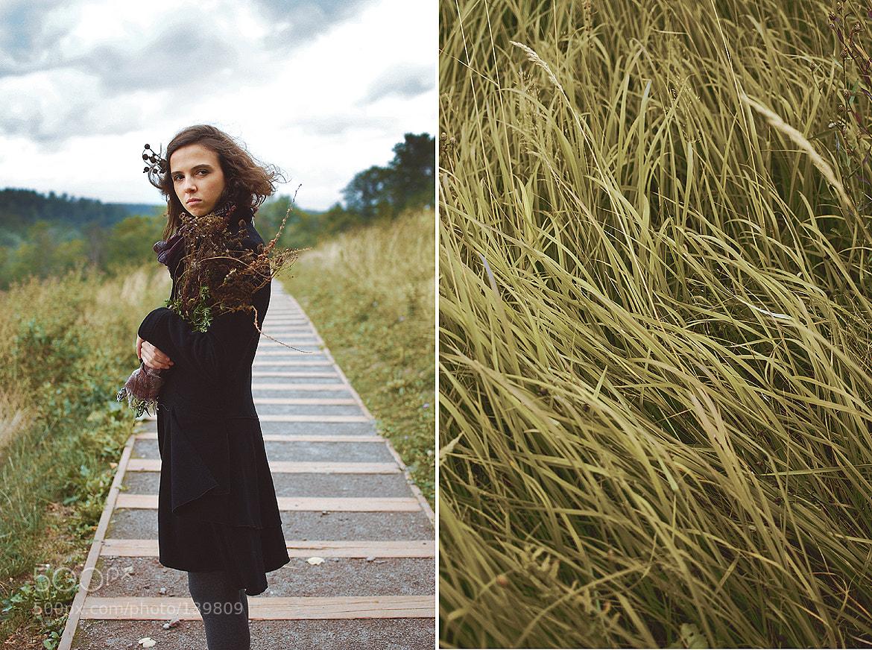 Photograph Осенние травы by Ju  on 500px