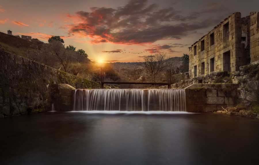 Frozen in Time by Pedro Quintela