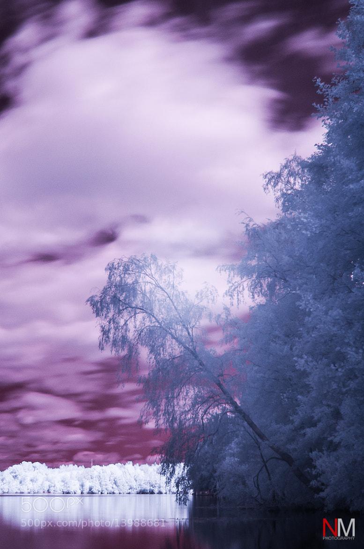 Photograph By The Lake by Niko Mönkkönen on 500px