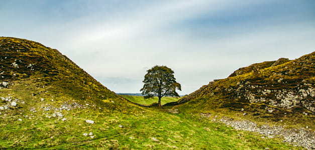 Sycamore Gap, Northumberland, U.K.....the traditional angle of this very popular spot by Brian Wilson on 500px
