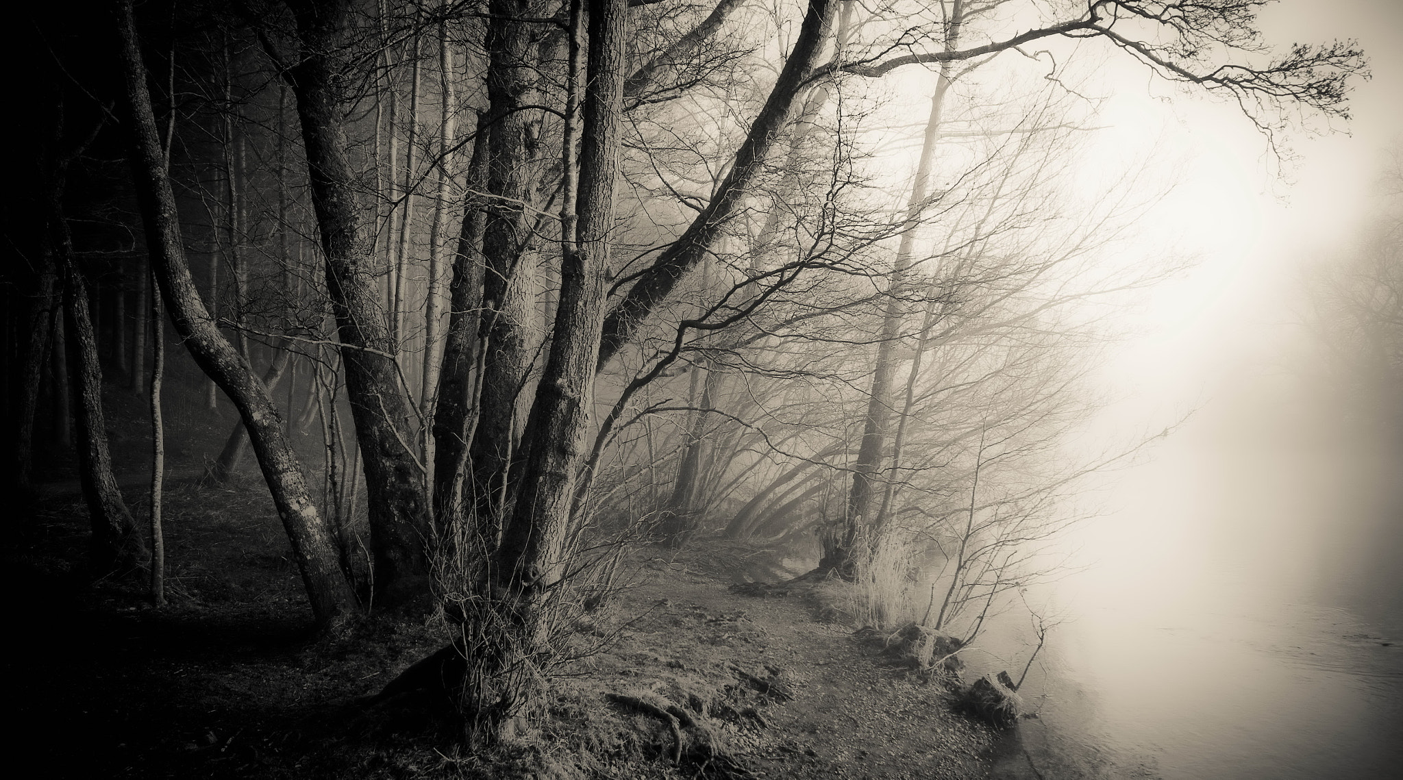 Photograph  The Edge of Darkness by Mark Littlejohn on 500px