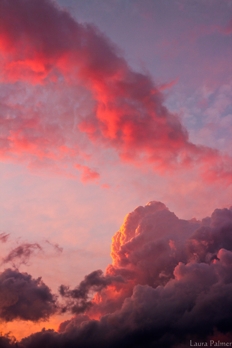 Photograph Big sky sunset by Laura P on 500px
