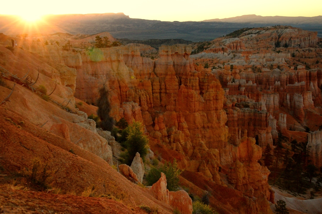 Photograph Bryce Canyon by Jean-noel Viltard on 500px