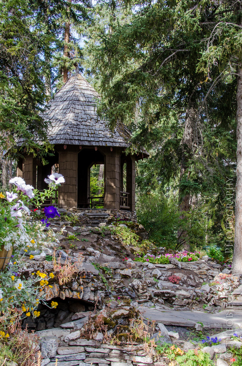 Photograph Gazebo - Banff by Kevin Smith on 500px