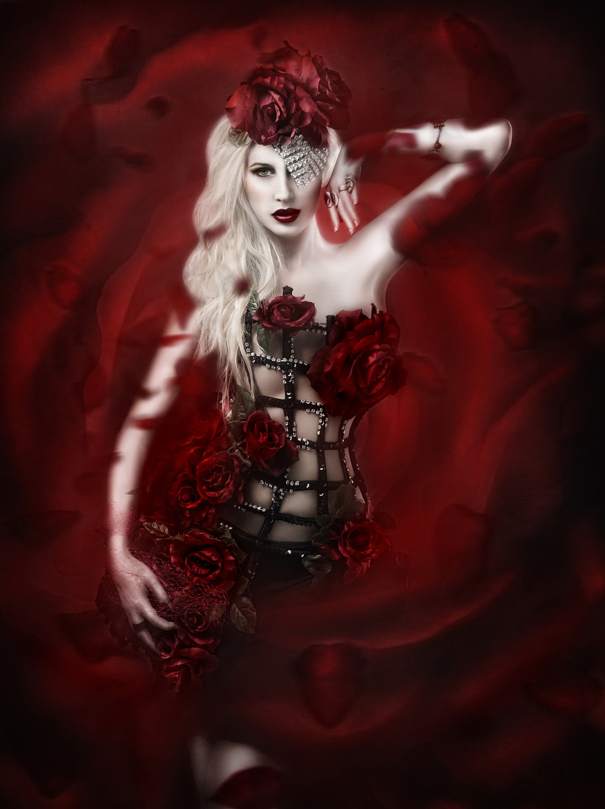 Photograph red roses by Rebeca  Saray on 500px