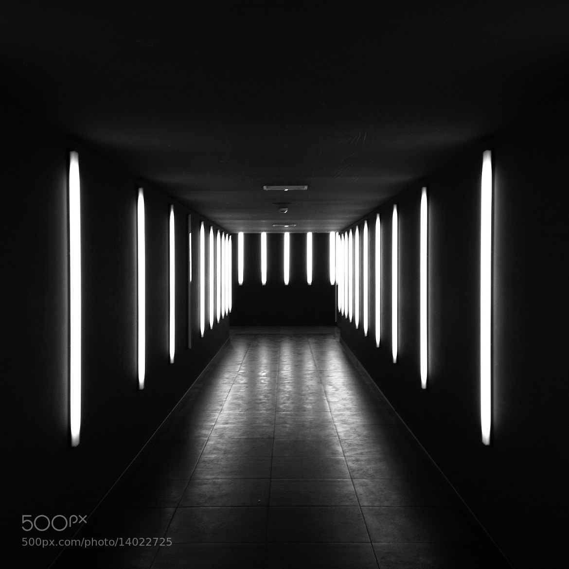 Photograph come in by Alessandro  on 500px