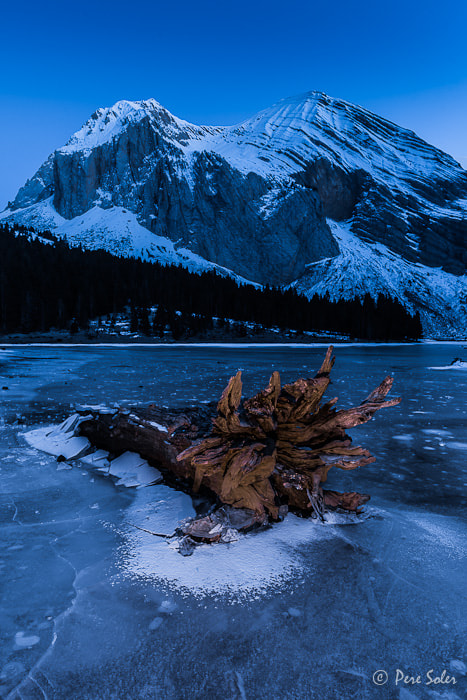 Photograph The Lake Monster by Pere Soler on 500px