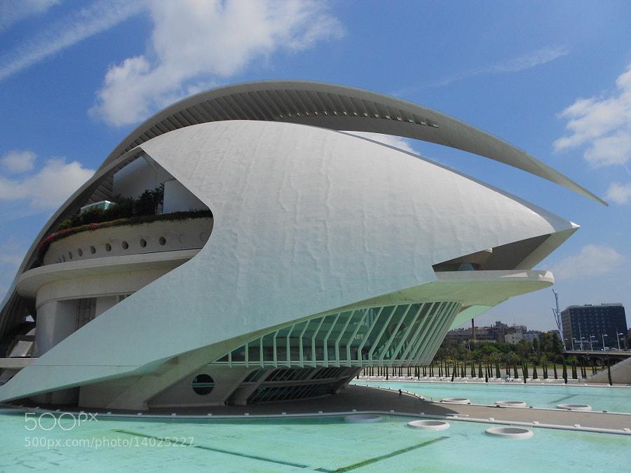 palau de les Arts - Santiago Calatrava by Fabrizio Pivari (pivari) on 500px.com