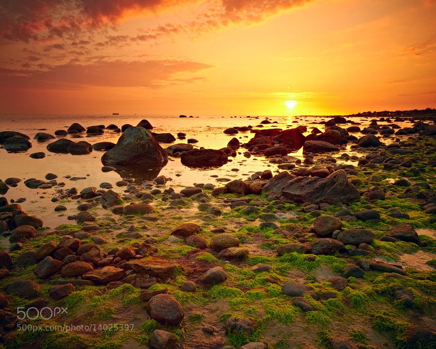 Photograph Sunset at Domsten, Skåne, Sweden. by Magnus Larsson on 500px