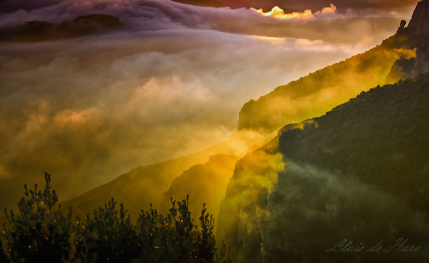 Photograph Montserrat by Lluis  de Haro Sanchez on 500px
