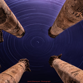 Gerasa Columns Trails  by jamil ghanayem (jamiline)) on 500px.com