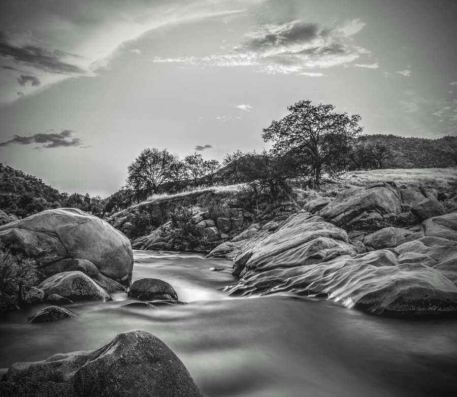 Downstream by Bart Rogiers on 500px.com