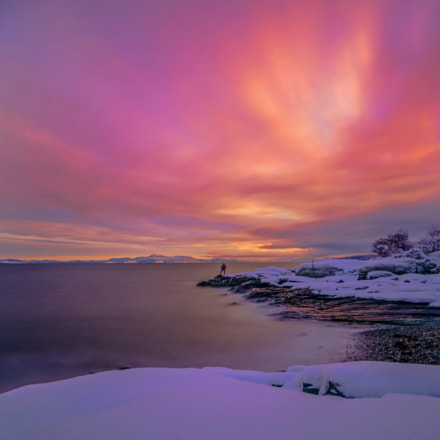 Amazing winter sunrise in Ladestien, Trondheim