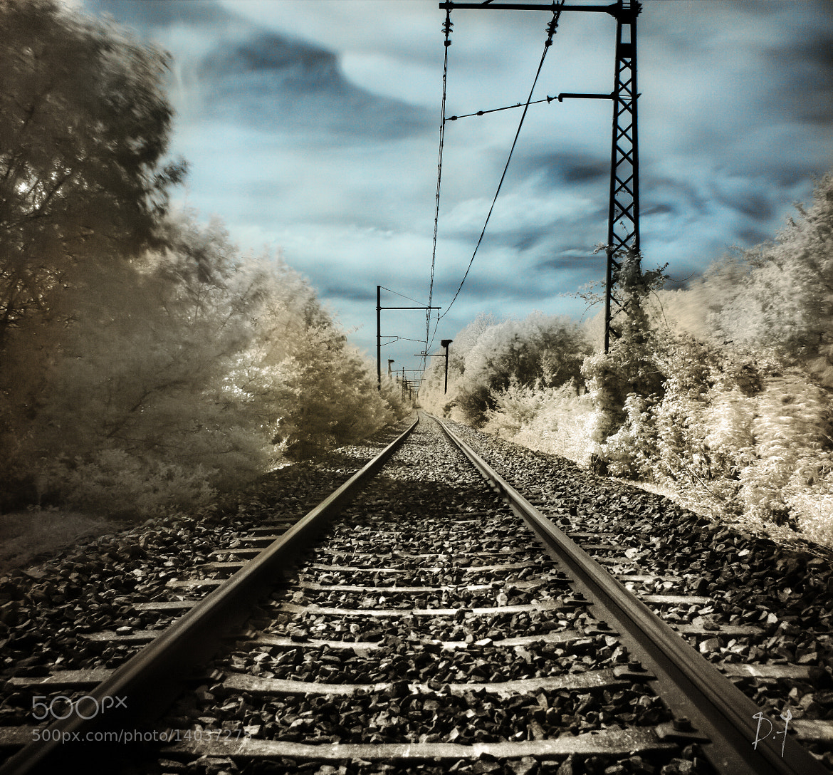 Photograph Track by dufau julien on 500px