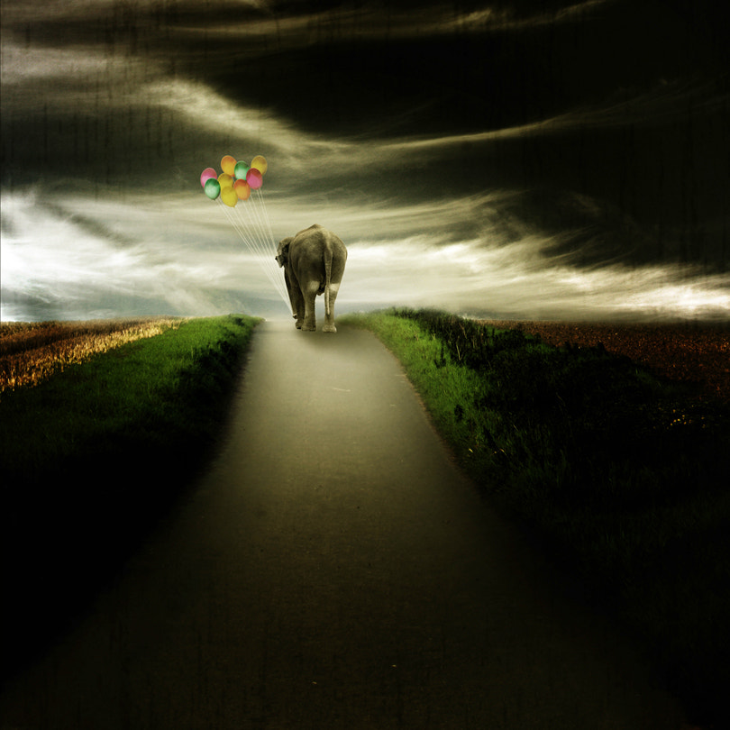 Photograph leaving by Pixel Passion on 500px