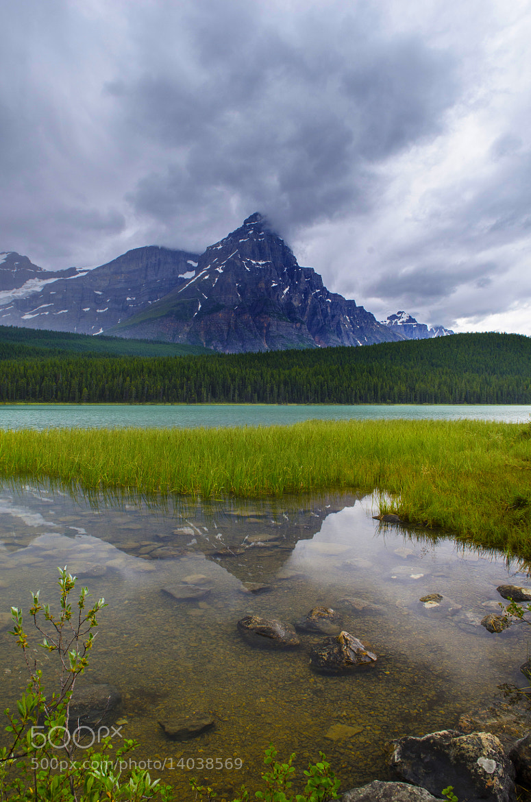 Photograph Waterfowl Lake by Anura Fernando on 500px