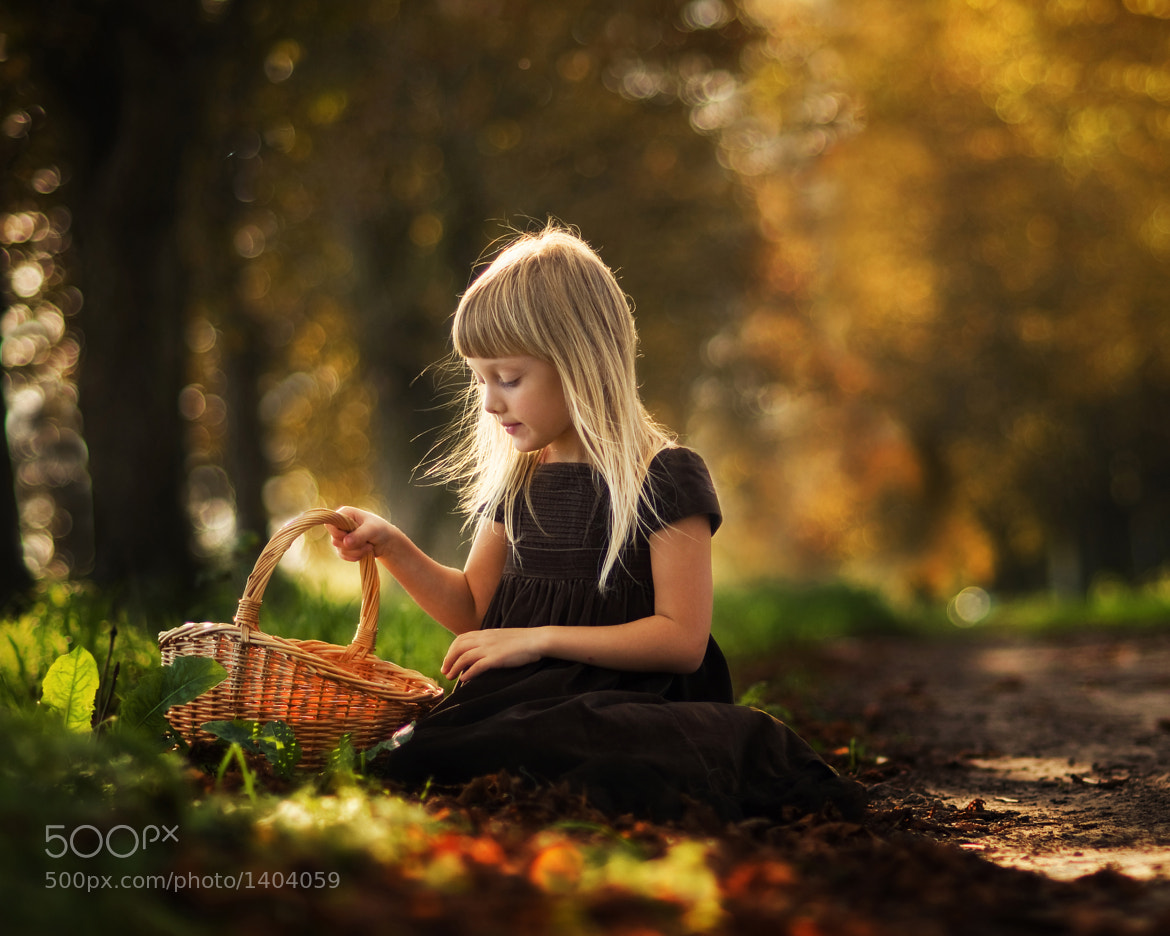 Photograph the autumn has come by Magdalena Berny on 500px