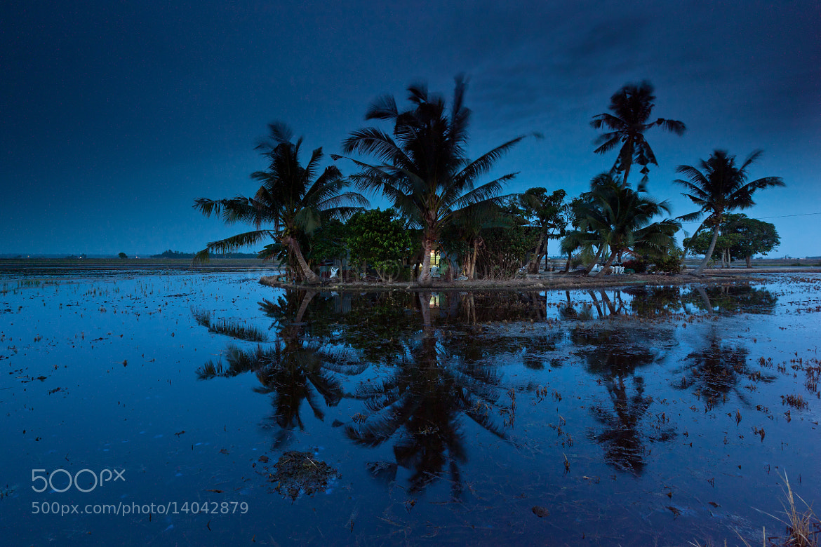 Photograph When night falling by jihhaur lio on 500px