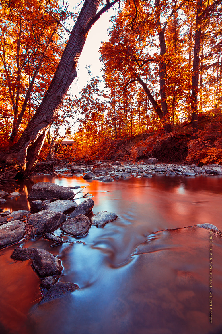 Photograph Flowing into Autumn by Dustin Abbott on 500px