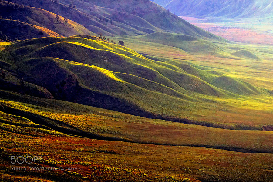Photograph Teletubies Hill by Fabianus Hendrawan on 500px