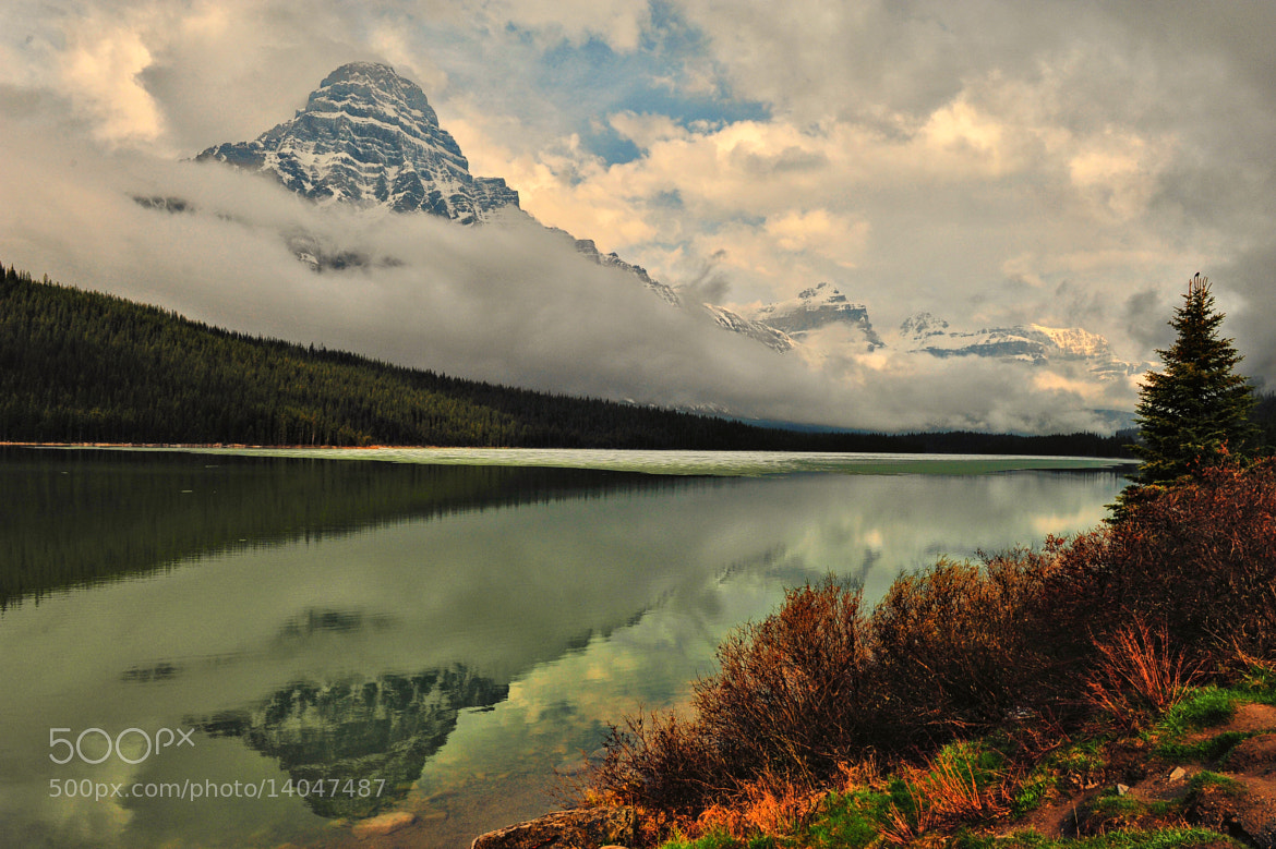 Photograph Light at Waterfowl Lake by Jeff Clow on 500px