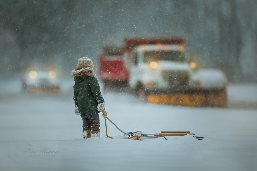 Through The Snow... by Lilia Alvarado on 500px.com