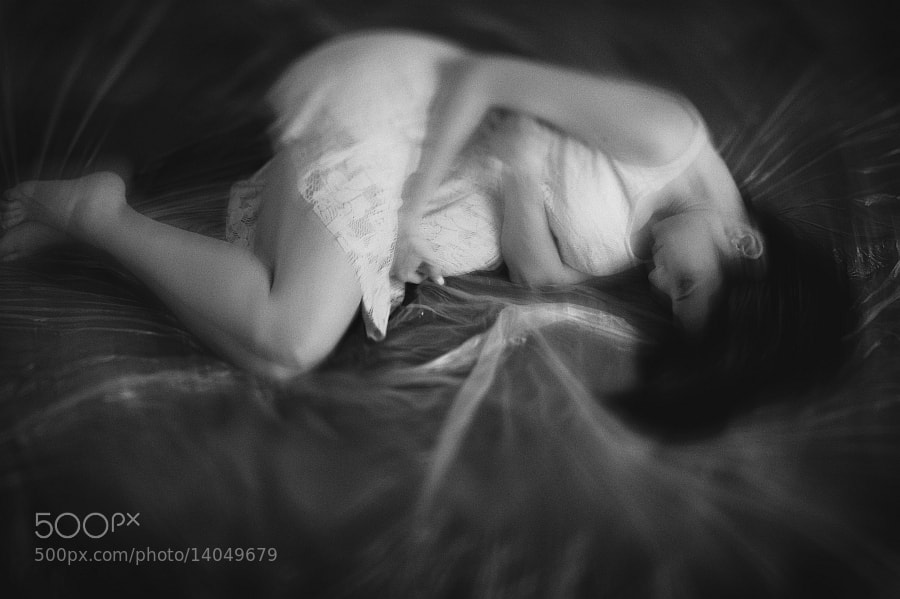 Photograph the butterfly effect by Vladimir Perfanov on 500px