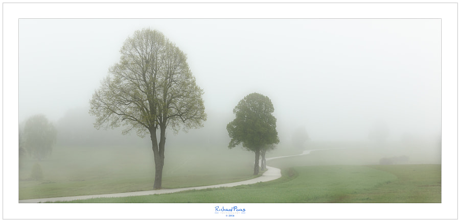 Misty Litschau Koenigsleitn by Richard Paas on 500px.com