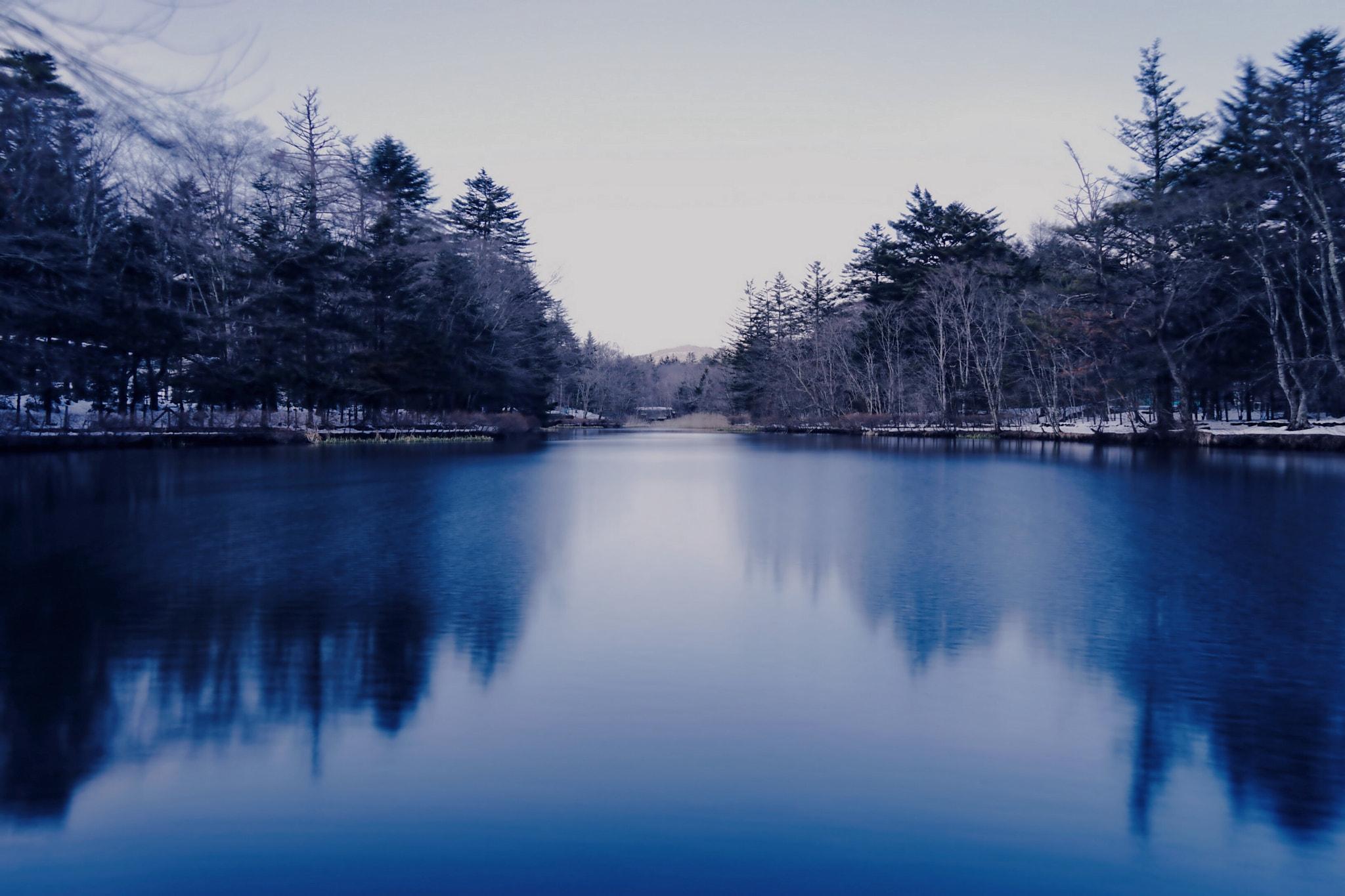 Winter Cold Pond. \