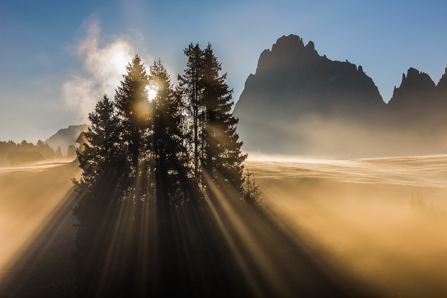 Photograph The Rays by Hans Kruse on 500px