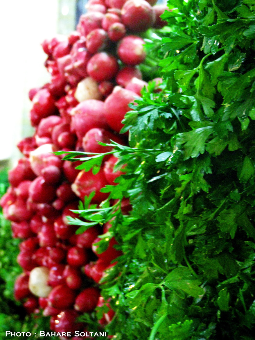 Photograph Vegetable by Bahare Soltani on 500px