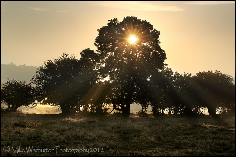 Photograph `Morning` by Mike Warburton on 500px