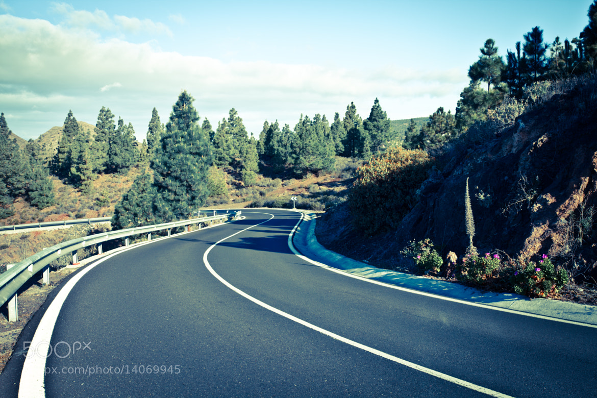 Photograph On a way to Pico Del Tiede, Tenerife by Ela Witkowska on 500px