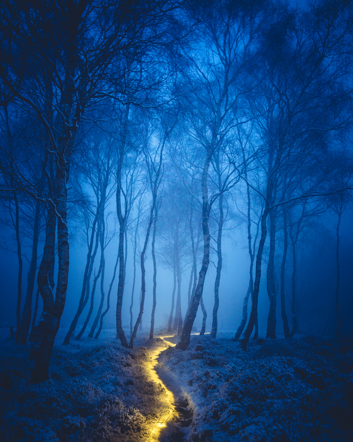Fairy Path de James Mills sur 500px.com