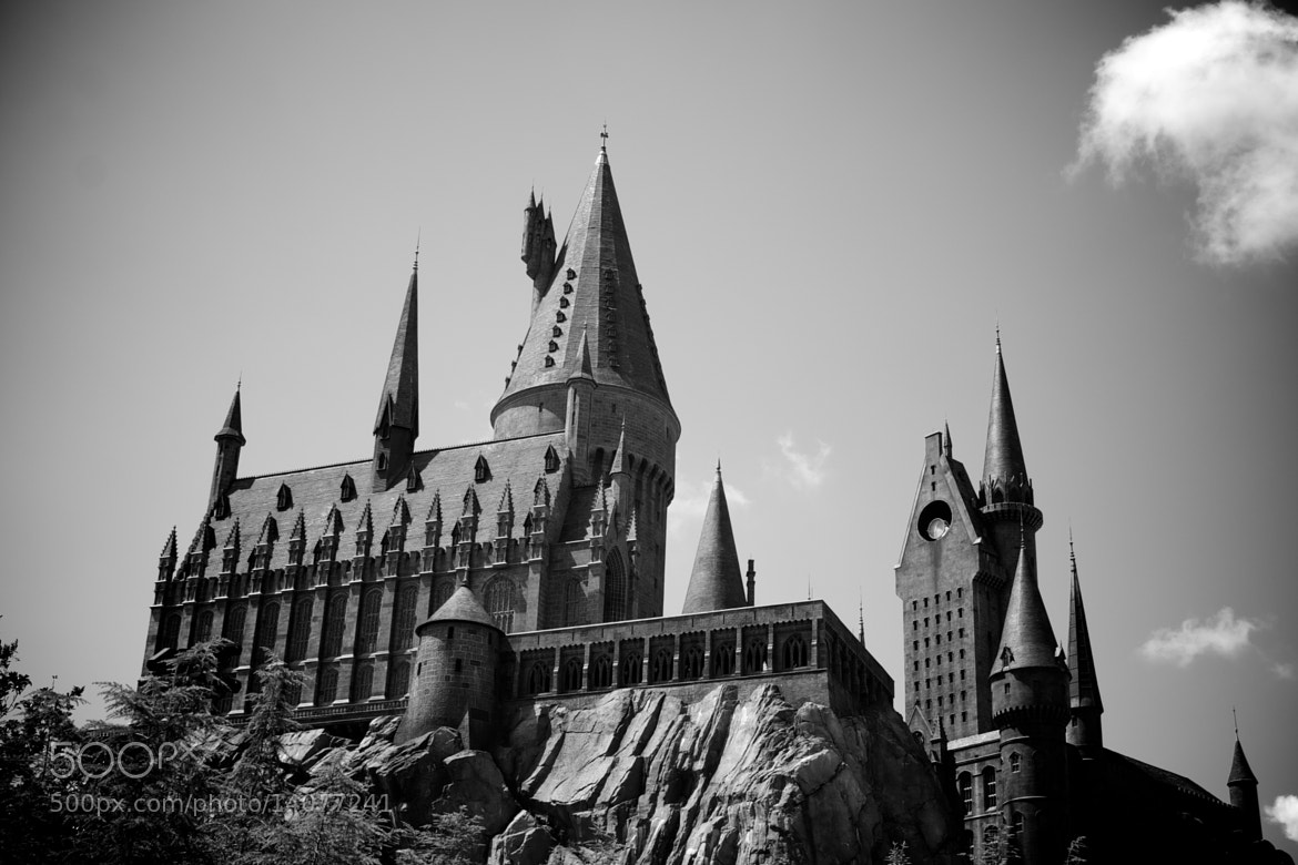 Photograph Hogwarts by Wilfried Schreder on 500px