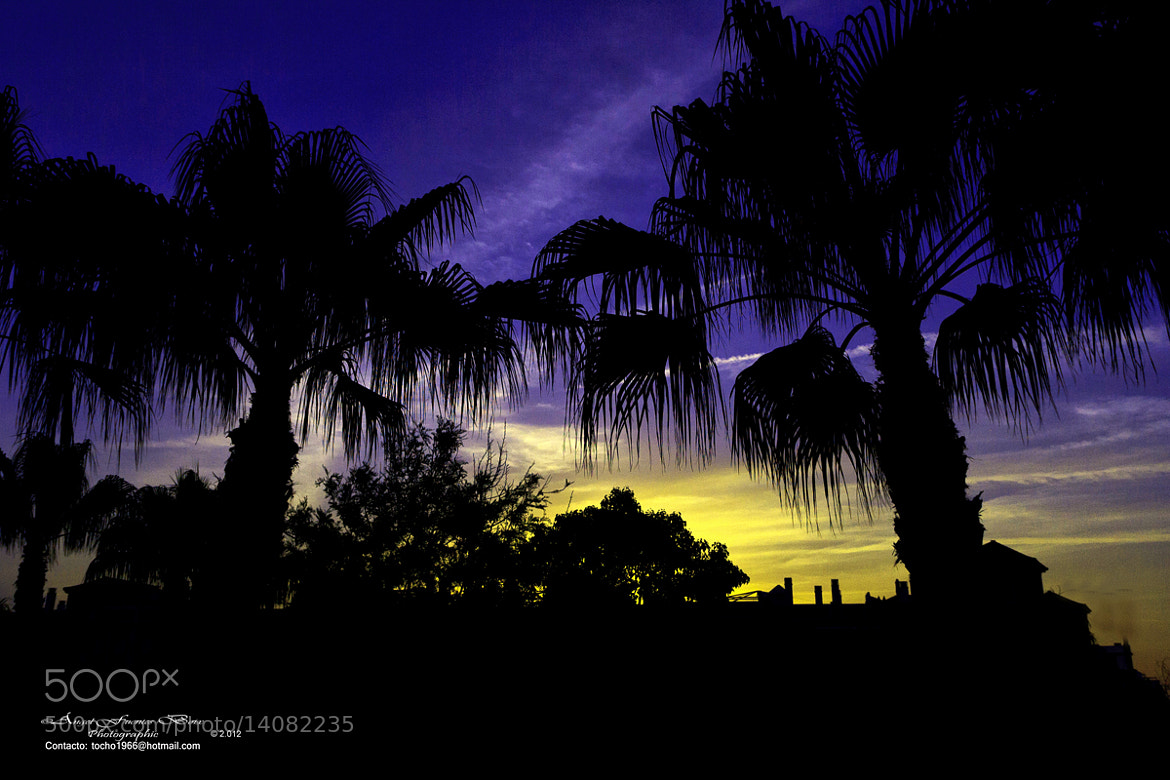 Photograph Atardecer en colores by Angel Fuentes Boix on 500px